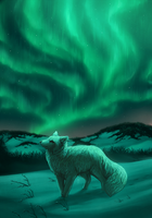 Aurora Borealis by kippurable