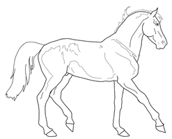 Thoroughbred Lineart by Murasaki99