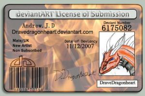 My licence by DraveDragonheart