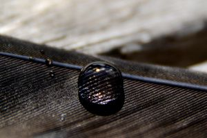 Droplet 26 by ThereseBorg