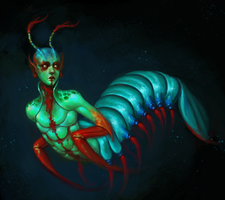 mantis shrimp. by acid-tongued