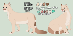 Sona reference sheet by Ageen