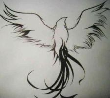 Tattoo Design ~ Outline of a Phoenix by WiththeButterflies