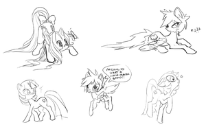 pony doodle dump by ponywise