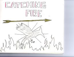 catching fire by kndon12