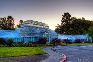 Volunteer Park Conservatory by UrbanRural-Photo
