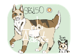[OPEN] American Bobtail AUCTION by Lobi-Adopts