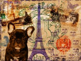 Le Bouledogue Francais by mightee-mouse