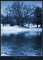 Calm of Winter by JRose-Photography
