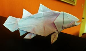 Simple coelacanth by palaeorigamipete