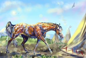 Indian horse by whitecrow-soul