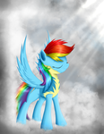 Rainbow Dash by ScootieCutie