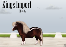 #62 Kings Import by emmy1320