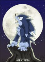 Howlin' at the moon by novablue