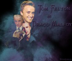 Tom Felton Drace Malfoy Wallpaper by VictoriaLovell93