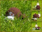 The Wild Haggis by foxymitts