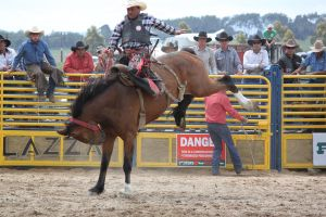 Taupo Rodeo 107 by Sooty-Bunnie