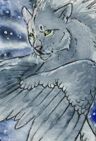.: Lurking in the Shadow-ACEO :. by Shien-Ra