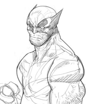Wolverine Sketch by Ramonn90