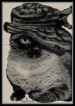 the cat in the hat...blk n white by miapicassa