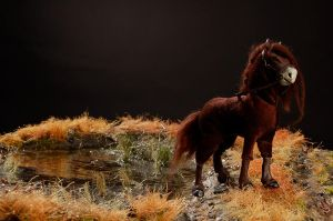 The Scottish Kelpie by Magweno