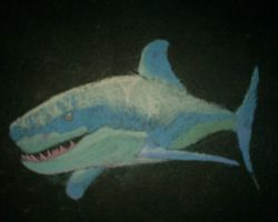Sidewalk Chalk SHARK by Lu-Kutha