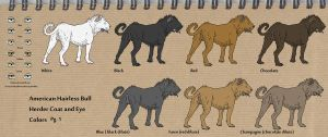 American Hairless Bull Herder breed sheet no.2 by Gutter-Mutt