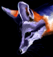 Grey fox speed paint by Tianithen