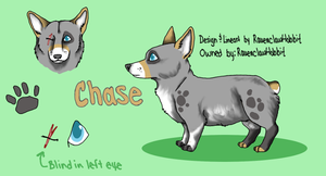 Chase Bennet Reference by RavenclawHobbit