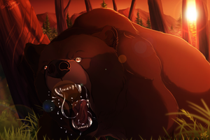 Don't mess with the bear by Kairi292