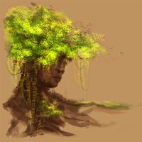 Face of tree by Siwass