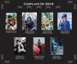 Cosplays of 2014: The Year In Review by HeichouAwesome