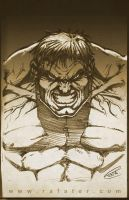The Hulk sketch by rafater