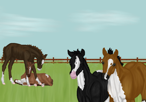 Foals of this season by RisingAngelss