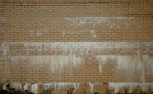 Brick Wall Texture Stock by redwolf518stock