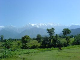 Kangra-Himachal Mountain by indians