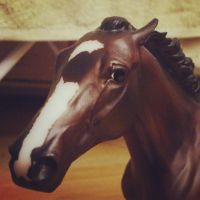 Rachel Alexandra - Breyer by CrocodileRawk