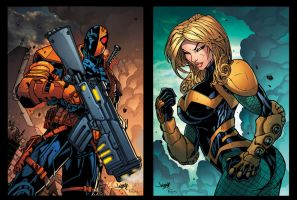 DeathStroke and Canary DC Card by Tonywash