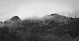 fog of snoqualmie.3 by jonesblachowicz