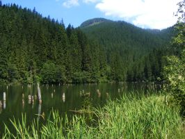 red lake 1 by compot-stock