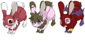3 Bunny Adoptables (2/3 open) by stephaniescarlet