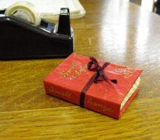 Miniature book by schaduwlichtje