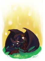 How to train your dragon by InfernoFZ