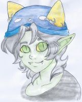 VOILA it is done!!(nepeta) by unique-dreamers