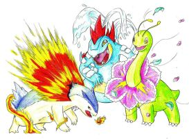Second Generation Starter Evolutions by ToxicityDragon