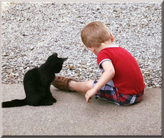 A Boy and His Black Kitten by WDWParksGal