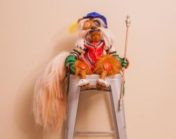Sir Didymus 13of17 by NickDClements