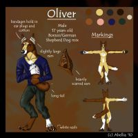 Oliver Reference Sheet by Abellia
