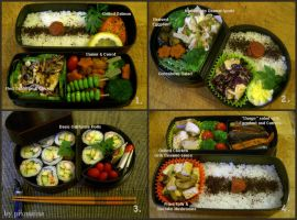 Obento collection 5 by pixmaina