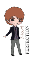 Perfection Zhoumi ver. by Panda-Devil